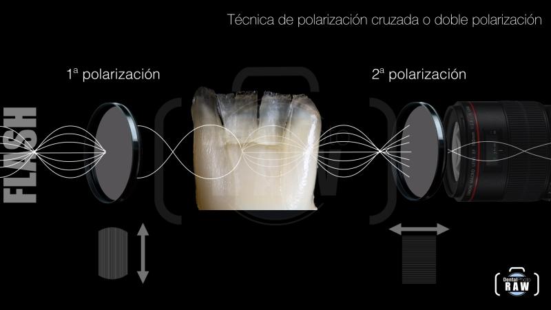 polarizacion polaris web.008